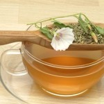 Best Herbal Remedies for the Biliary Dyskinesia